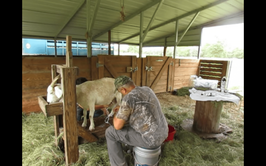 Frontier Milking Kit With Battery Pack